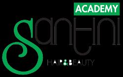 logo Accademia I Santini